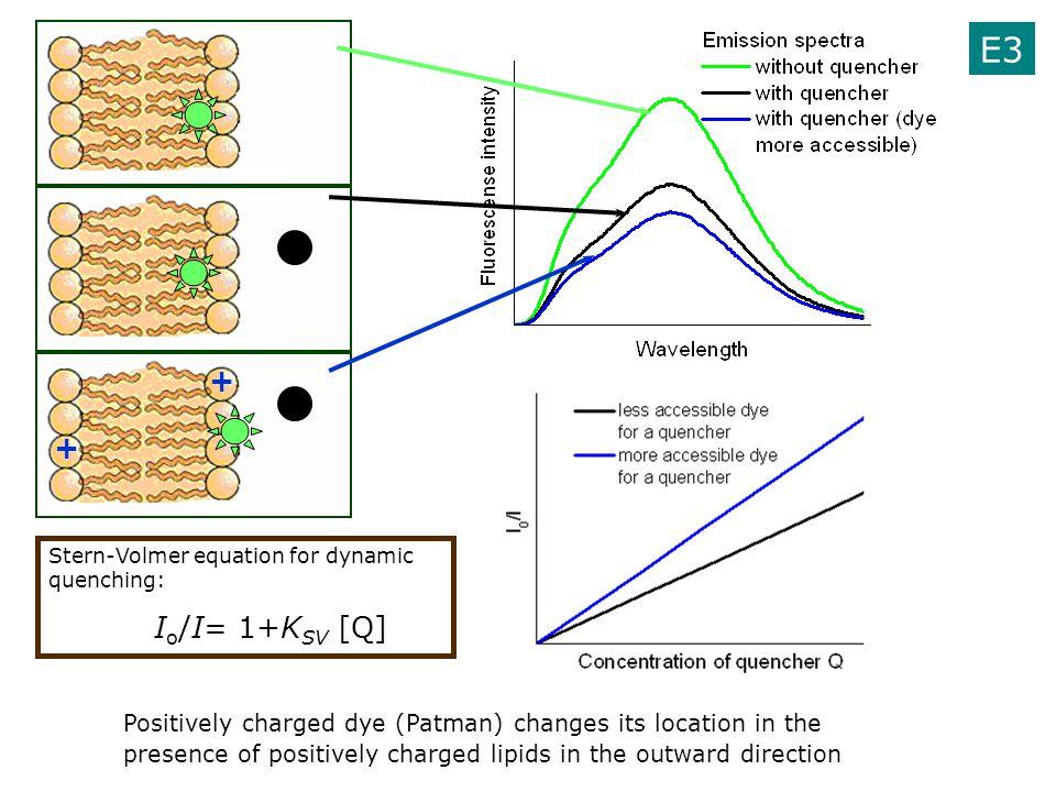 E3 + + Stern-Volmer equation for dynamic quenching: Io/I= 1+KSV [Q]